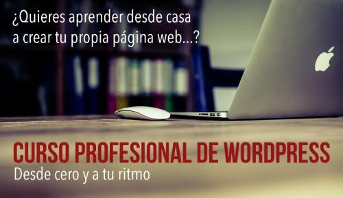 Curso de wordpress online profesional